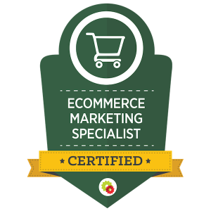 eCommerce marketing expert